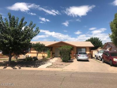 Douglas Single Family Home For Sale: 1204 E 4th Street