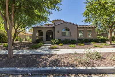 Buckeye Single Family Home For Sale: 20457 W Springfield Street