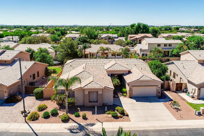 Chandler Single Family Home For Sale: 2185 W Longhorn Drive