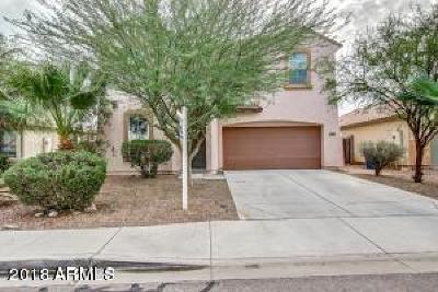 Buckeye Single Family Home For Sale: 1615 E Silverbirch Avenue