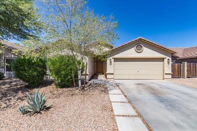 San Tan Valley Single Family Home For Sale: 2680 E Dust Devil Drive