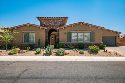 Cave Creek Single Family Home For Sale: 5805 E Calle Marita