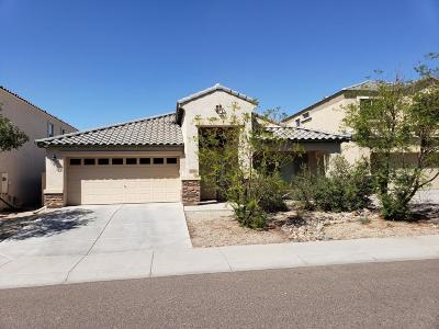 Tolleson Single Family Home For Sale: 9132 W Kirby Avenue