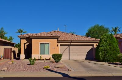 Sun City Single Family Home For Sale: 19861 N 107th Drive