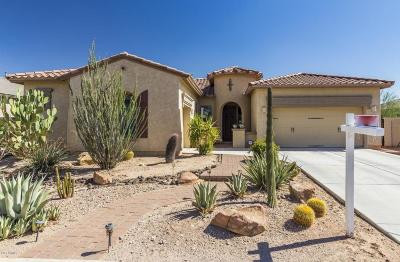 Peoria Single Family Home For Sale: 9295 W Quail Track Drive