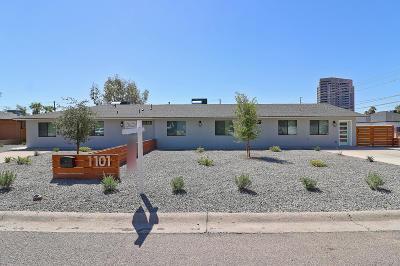 Phoenix Single Family Home For Sale: 1101 E Weldon Avenue