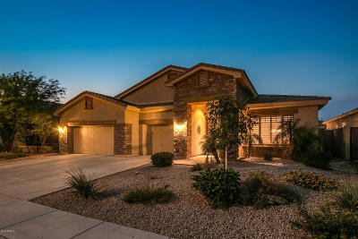 Phoenix Single Family Home For Sale: 2430 W Cavedale Drive