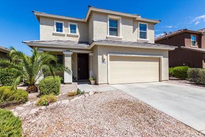 Mesa Single Family Home For Sale: 11104 E Segura Avenue