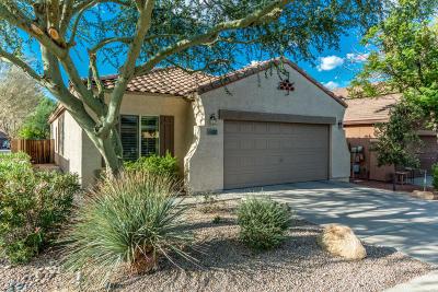 Mesa Single Family Home For Sale: 9149 E Auburn Street