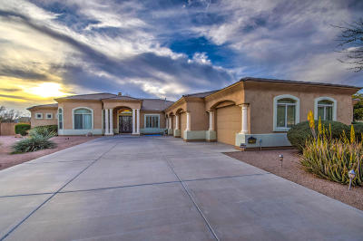 Queen Creek Single Family Home For Sale: 22504 S 196th Circle