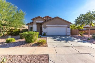 Surprise Single Family Home For Sale: 16995 W Windermere Way