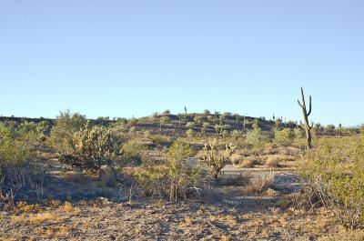 Wittmann Residential Lots & Land For Sale: W River Road