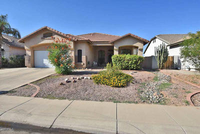 Gilbert Single Family Home For Sale: 3908 E Juanita Avenue