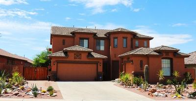 Gold Canyon AZ Single Family Home For Sale: $480,000