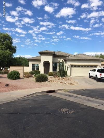 Gilbert Single Family Home For Sale: 3158 S Seton Avenue