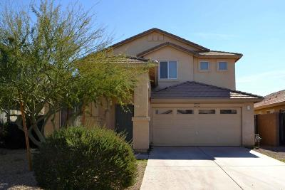 San Tan Valley Single Family Home For Sale: 2901 W Angel Way