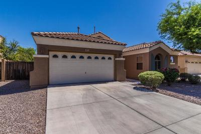 Chandler Single Family Home For Sale: 2279 E Ebony Drive