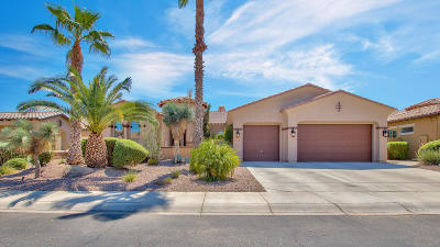 Chandler Single Family Home For Sale: 3333 E Nolan Drive