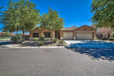 Laveen Single Family Home For Sale: 8619 S 46th Drive