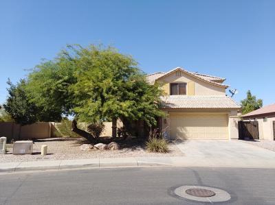 Casa Grande Single Family Home For Sale: 1520 E Racine Drive
