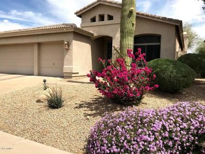 Cave Creek Single Family Home For Sale: 29609 N 48th Street