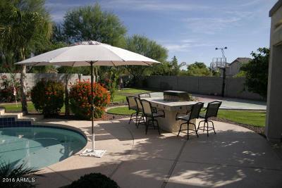 Surprise Rental For Rent: 13506 W Evans Drive