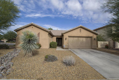 Chandler Single Family Home For Sale: 3876 E Scorpio Place