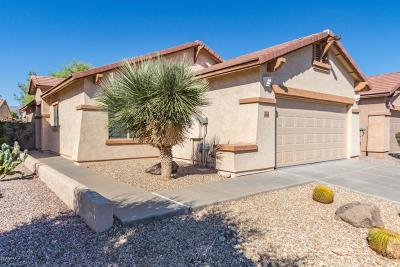 Gold Canyon Single Family Home For Sale: 10712 E Peralta Canyon Drive
