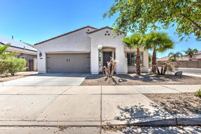Goodyear Single Family Home For Sale: 17437 W Papago Street