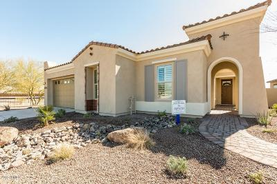 Goodyear AZ Single Family Home For Sale: $347,990