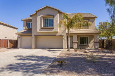 San Tan Valley Single Family Home For Sale: 3362 E Morenci Road