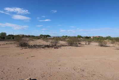 Wittmann Residential Lots & Land For Sale: 25228 W Blue Sky Drive
