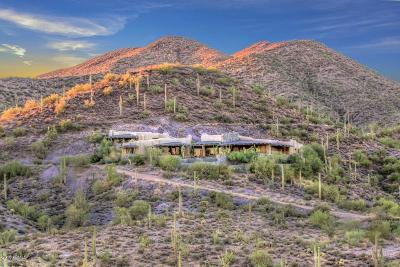 Scottsdale Single Family Home For Sale: 40384 N Brangus Road