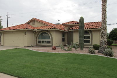 Mesa Single Family Home For Sale: 1127 Leisure World