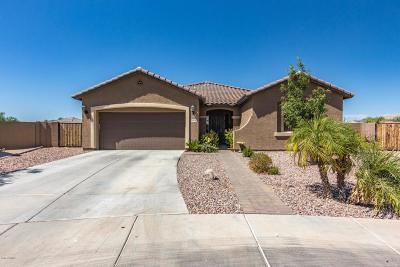 Goodyear Single Family Home For Sale: 16040 W Desert Flower Drive