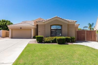 Mesa Single Family Home For Sale: 6333 E Player Circle