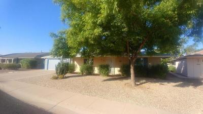 Sun City Single Family Home For Sale: 10508 W Bright Angel Circle