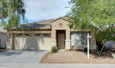 Maricopa AZ Single Family Home For Sale: $199,000