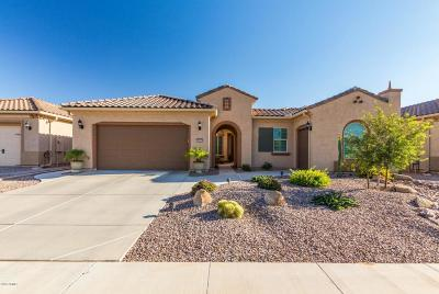 Chandler Single Family Home For Sale: 3937 E Bellerive Drive