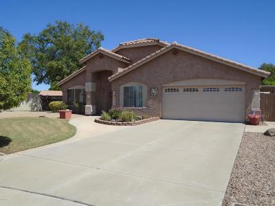 Gilbert Single Family Home For Sale: 631 S Lanus Drive