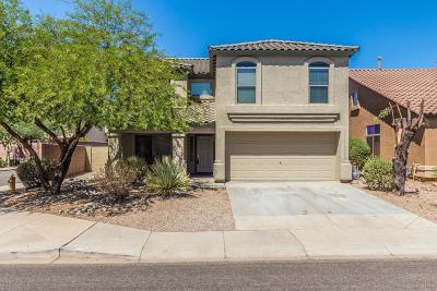 Phoenix Single Family Home For Sale: 2430 W Via Dona Road