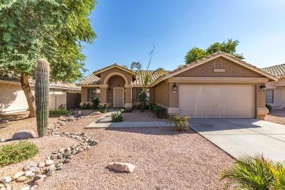 Mesa Single Family Home For Sale: 7331 E Nopal Avenue