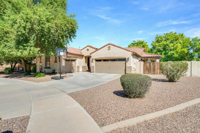 Queen Creek Single Family Home For Sale: 20357 S 187th Street