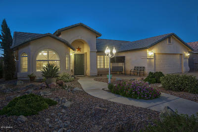 San Tan Valley Single Family Home For Sale: 3754 E Whitehall Drive