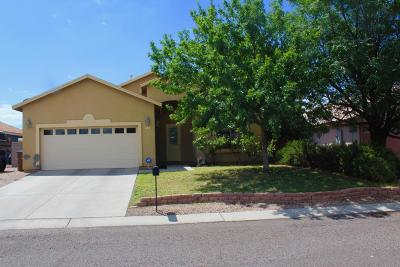 Douglas Single Family Home For Sale: 2713 E 8th Street