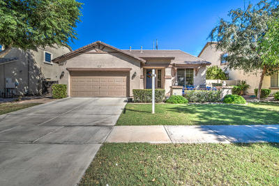 Gilbert Single Family Home For Sale: 4136 E Page Avenue