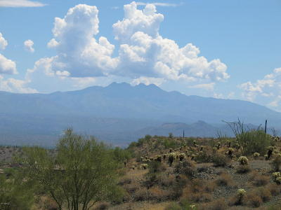 Fountain Hills Residential Lots & Land For Sale: 14048 E Bighorn Parkway