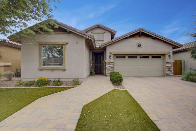 San Tan Valley Single Family Home For Sale: 28233 N Welton Place