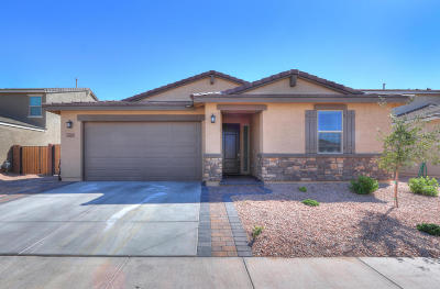 Maricopa Single Family Home For Sale: 40021 W Brandt Drive