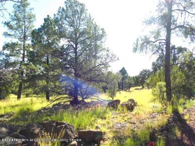 Coconino County Residential Lots & Land For Sale: 136 E Riverside Drive